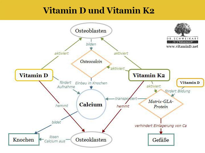 Vitamin D Und Vitamin K Dr Schweikart